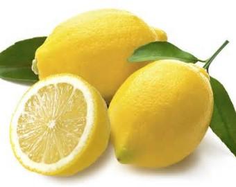 Lemon fresh fruit at Scott Street Tomato House in Memphis